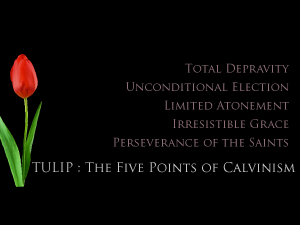 TULIP: The Five Points of Calvinism